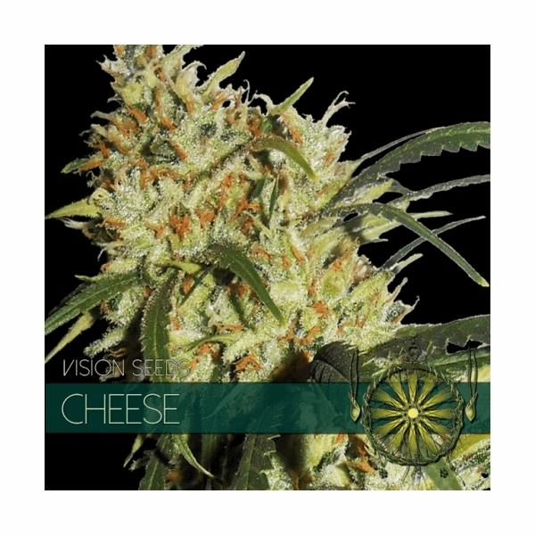 Cheese (V.S.)
