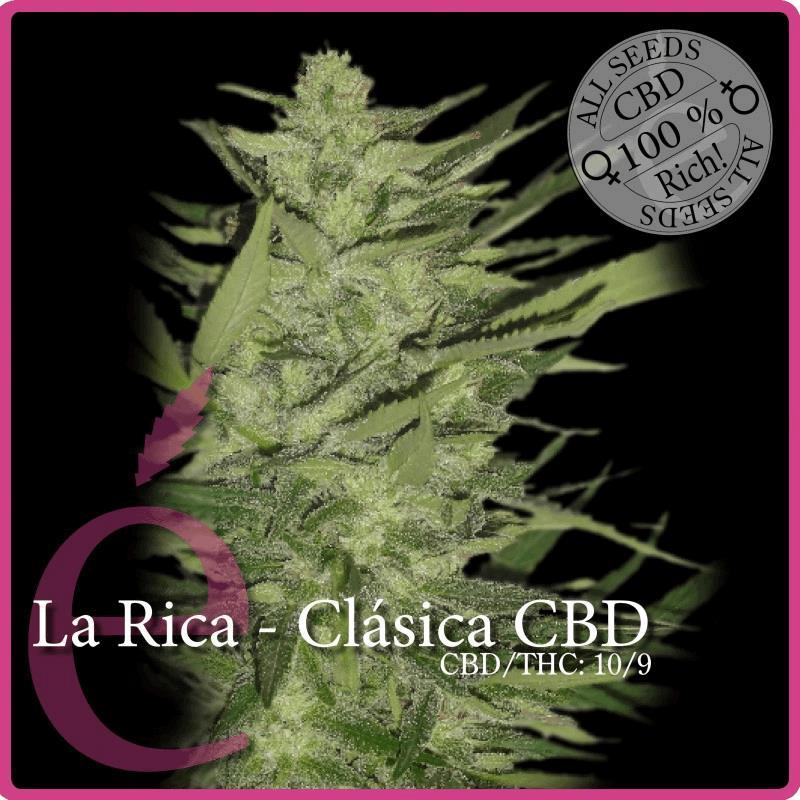 La Rica - Classique CBD
