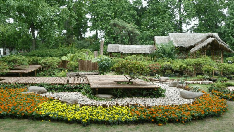 Ballade en chine jardin de bonsa s 3 autres plantes for Jardin chinois
