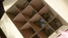 Séchage en LM box