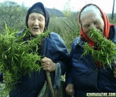 420 girl daisy inhale