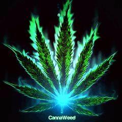 Cannaweed FLamme gazeuse