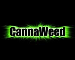 Cannaweed VS Photoshop !