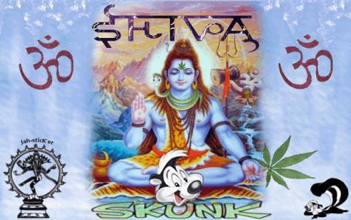 ShivaSkunk.jpg