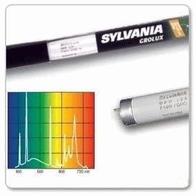 sylvania-tube-t5-grolux-54-watts-1150mm.jpg