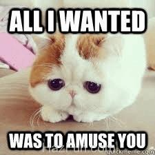 sad-cat-is-sad-67.jpg