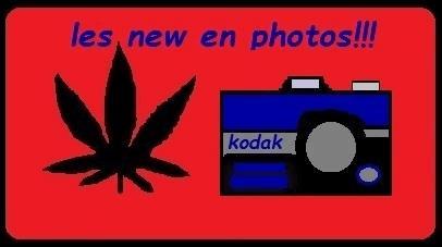 post-695842-0-93387900-1490122361.jpg