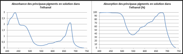Absorption vs absorbance forum.png