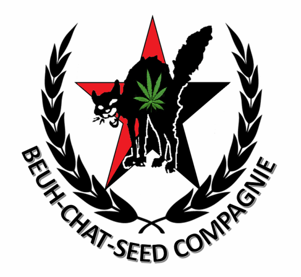 logo beuh-chat-seed compagnie.png