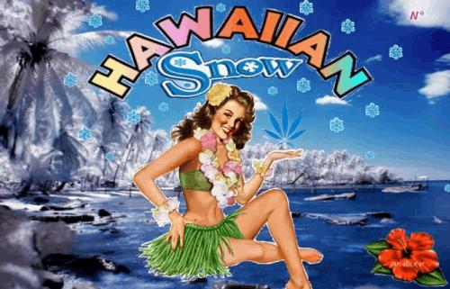 HawaiianSnow.jpg
