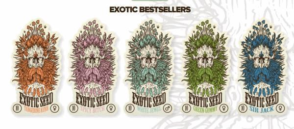 exo seeds.jpg