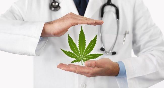 Cannabis thérapeutique : efficace contre la douleur et l'anxiété ?