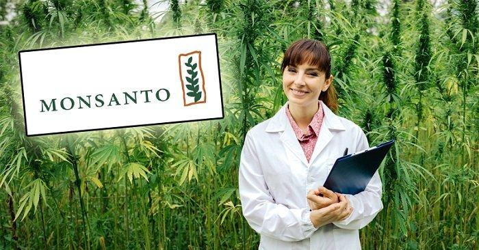 Prise de contrôle du cannabis par Bayer et Monsanto? Voici ce que vous devez savoir …