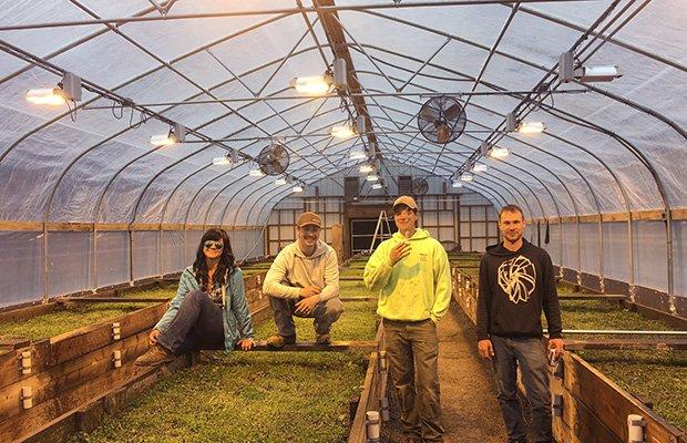 RIP à l'OMMP: La mort du cannabis médical en Oregon