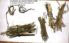 recyclage branche cannabis.JPG