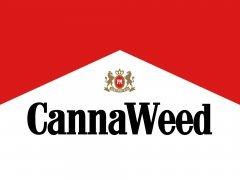 cannaweed malbak