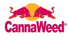 cannaweed red-bull