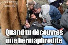 qd tu découvre une hermaphrodite