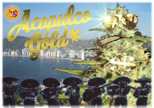 AcapulcoGold.jpg