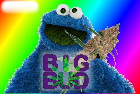 BigBud.jpg