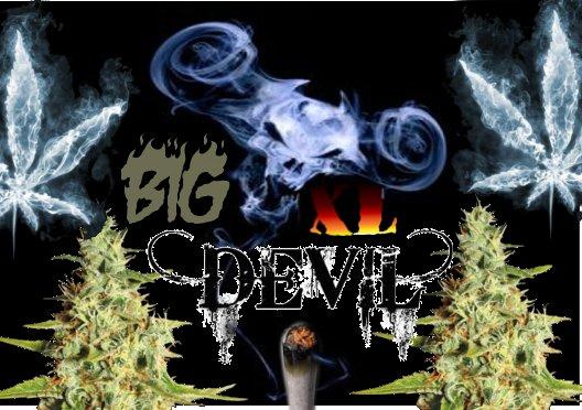 BigDevilXL.jpg