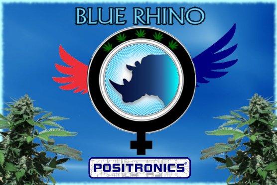 BlueRhino.jpg