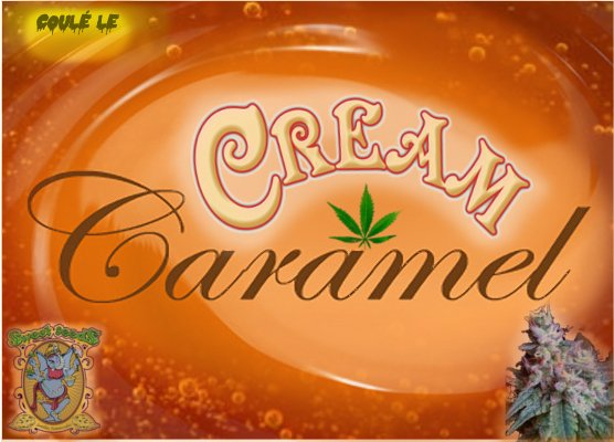 CreamCraramel.jpg