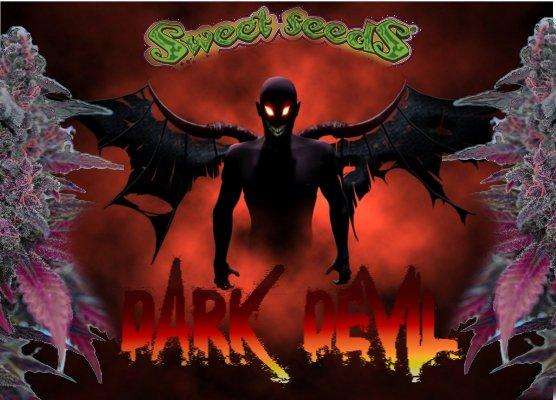 DarkDevil1.jpg