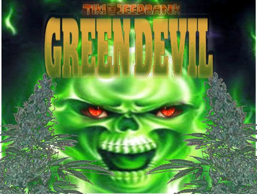 Greendevil1.jpg