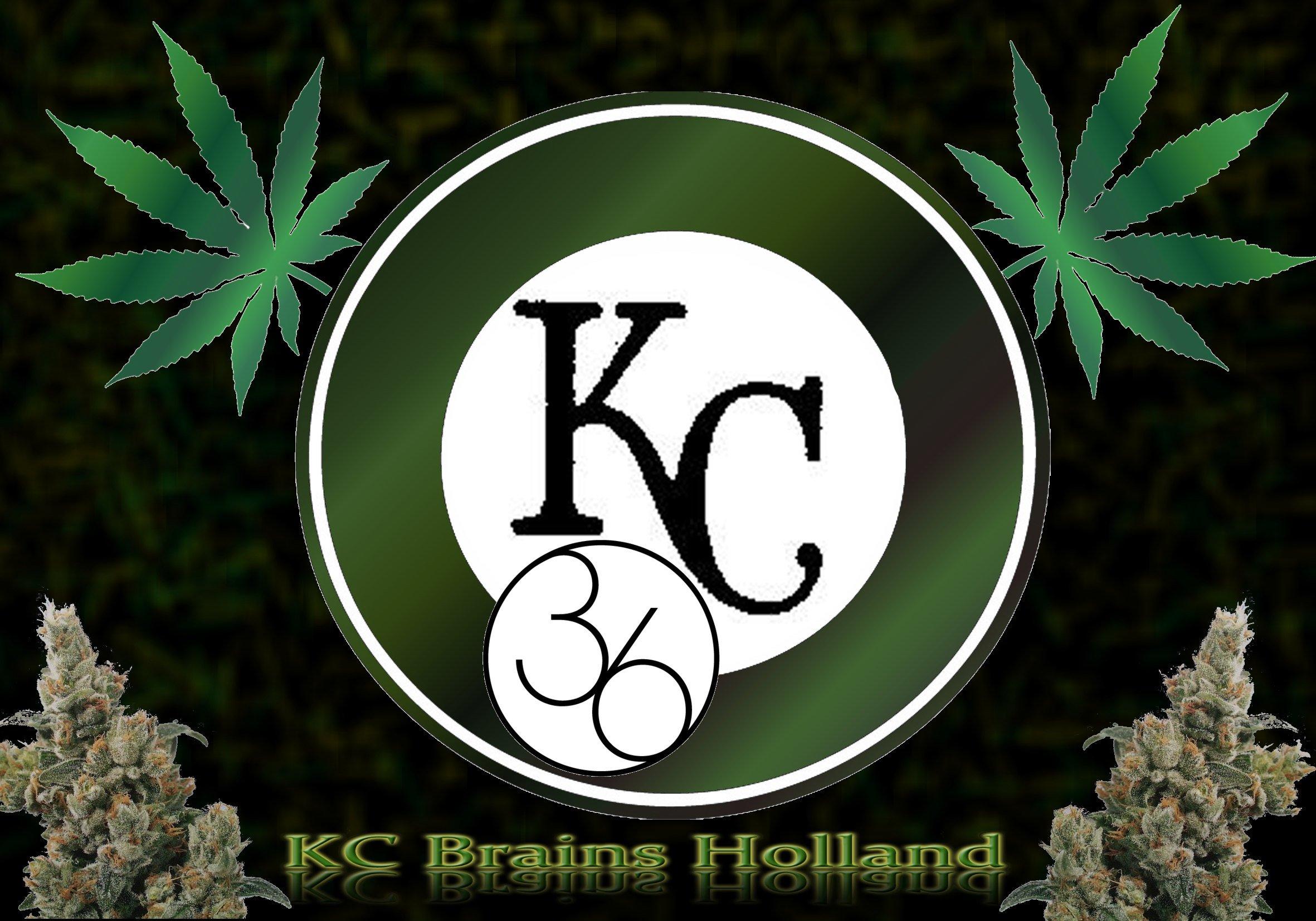 KC36.jpg
