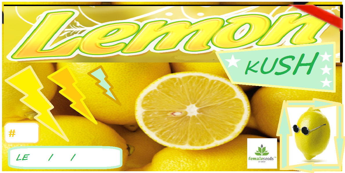 LEMONKUSH.png