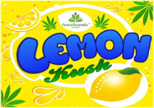 LemonKush3.jpg