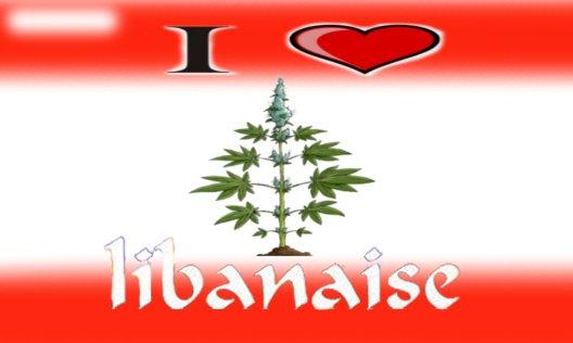Libanaise.jpg