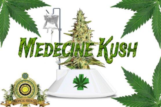 MedecineKush.jpg