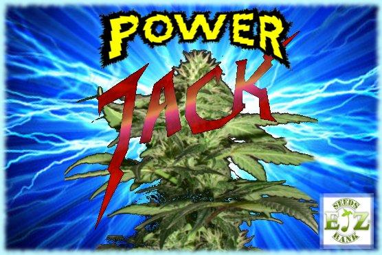 PowerJack.jpg