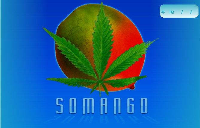 Somango.jpg