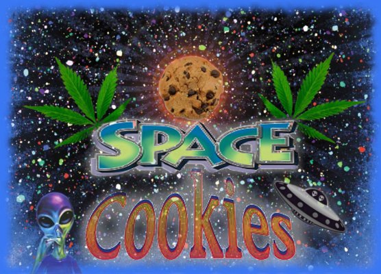 SpaceCookies.jpg