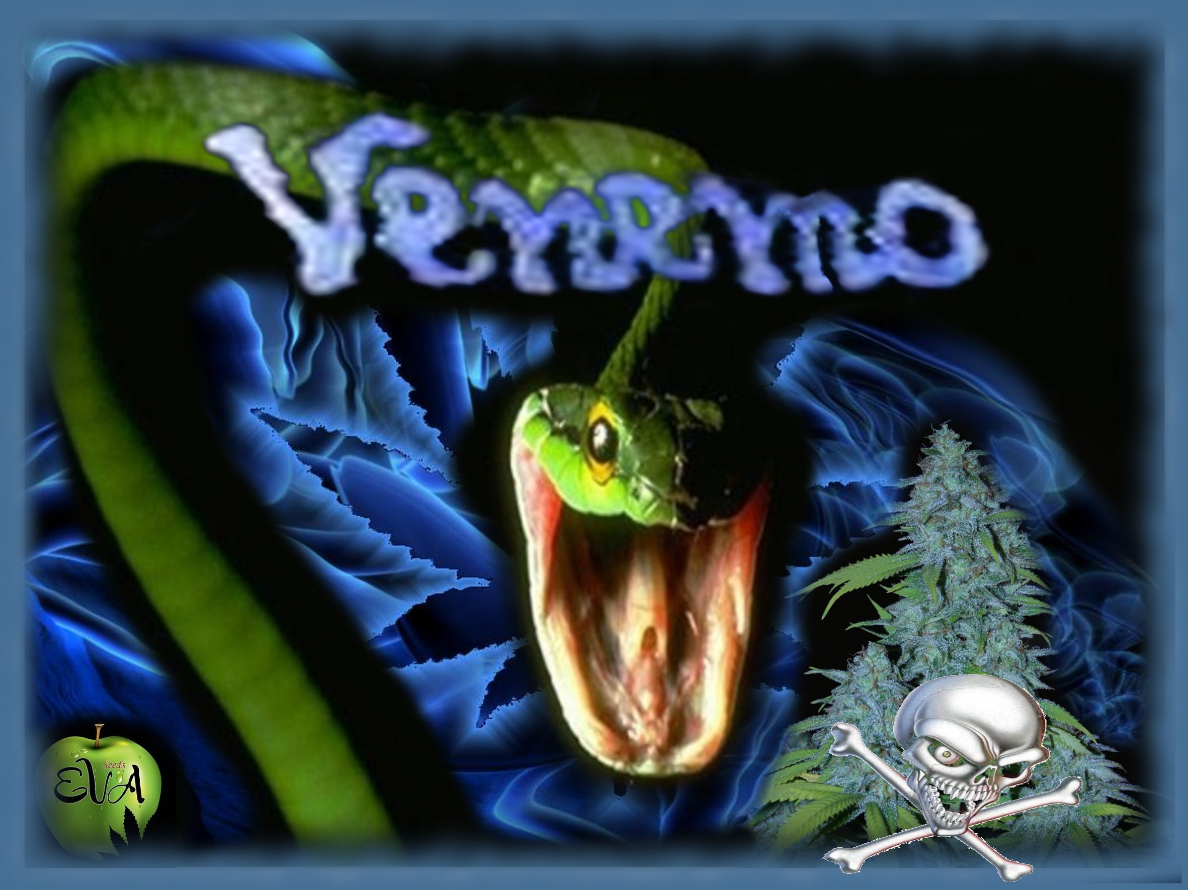 Venemo0.jpg