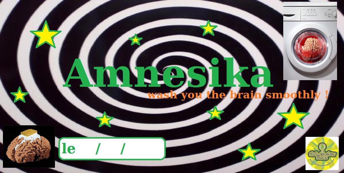 amnesika.png