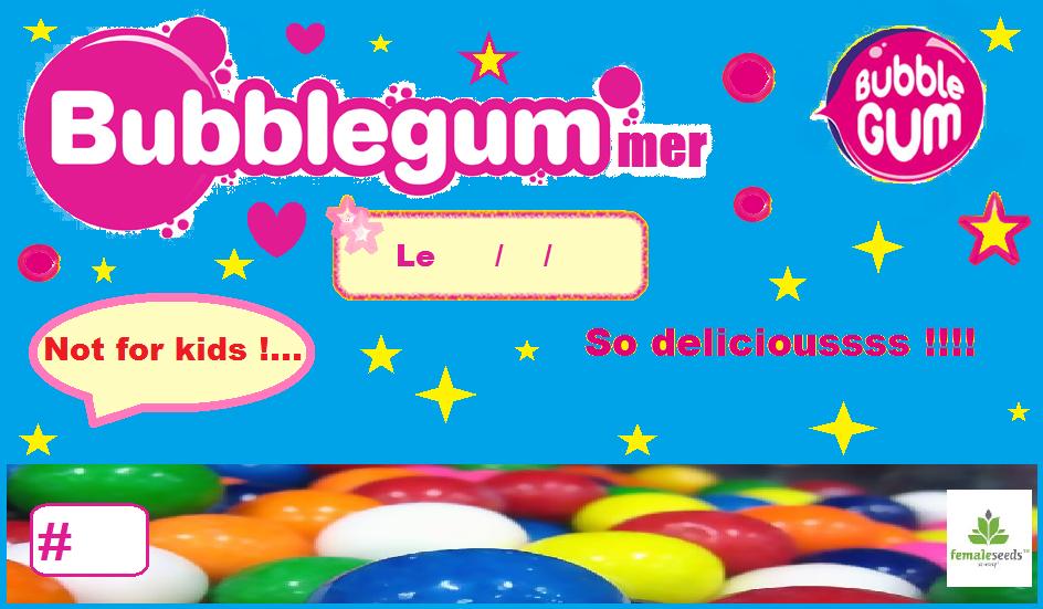 bubblegum1.png