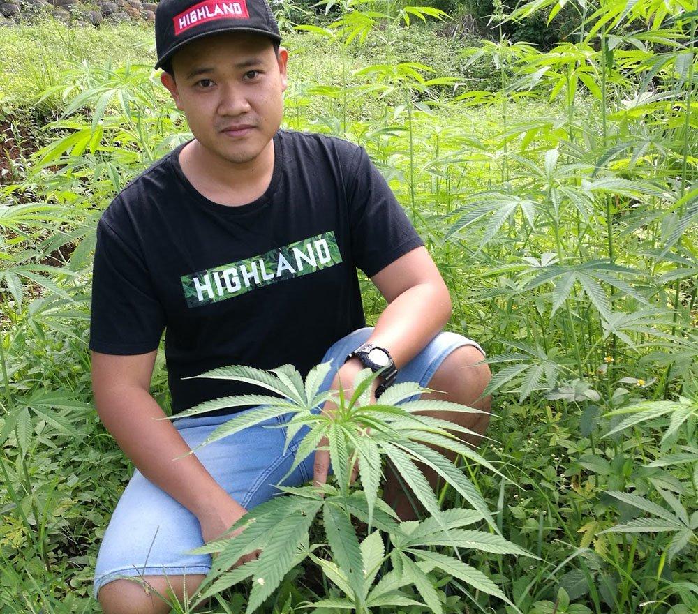 La weed médicale Thailandaise obtient une date de lancement