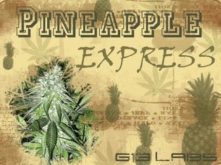 1255670198_pineappleexpressG13labs.JPG