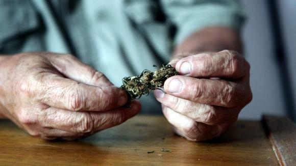 En Californie, le cannabis rend accro les seniors