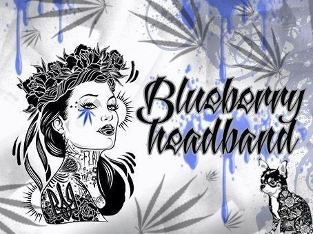 1443480503_blueberryheadband.JPG