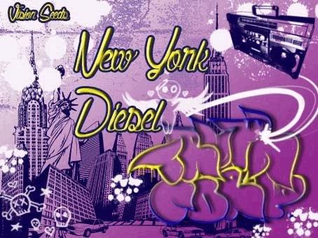 182804347_newyorkcitydieselvisionseeds.JPG