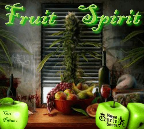 236257862_fruitspiritrqs.PNG