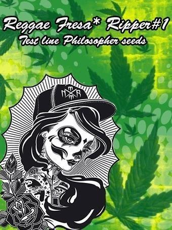 386193399_reggaefresaripper1testlinephilosphers.jpg