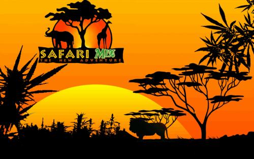 943225783_safarimix.PNG