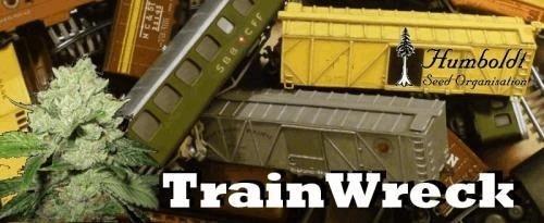 964039424_trainwreck-humboltseeds.JPG