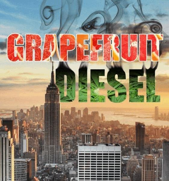 grapefruitdiesel.JPG
